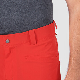 Salomon Wayfarer Shorts Men, goji berry